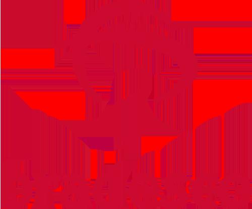 Conheça o Consórcio Bradesco | Automóveis, Veículos Pesados & Imóveis, Confira!